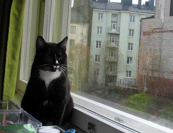 istuu ikkunalla