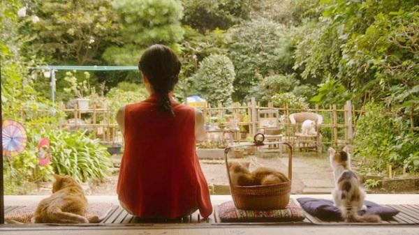 Sayoko kissojen kanssa terassilla