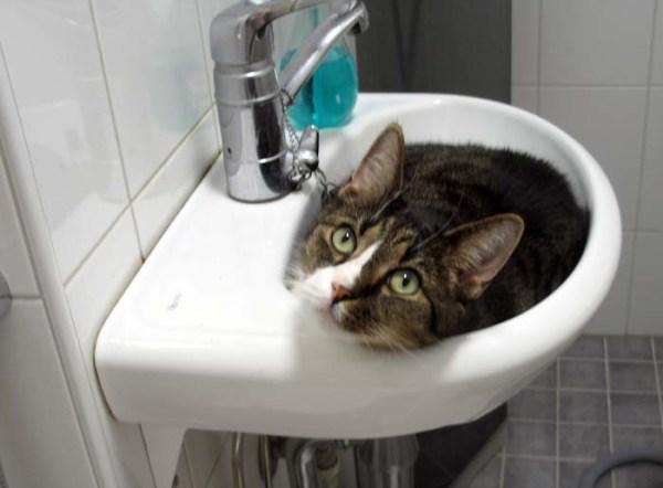 Privaattiyksiö! Mun! Oma rauha!