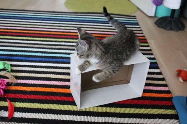 laatikko kaaatui kyljelleen