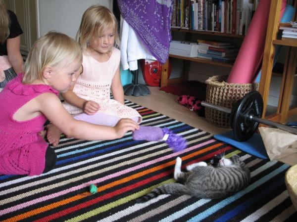 pikkutytöt ja zetor