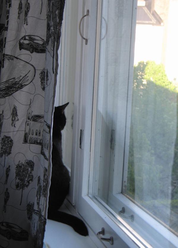 Ilona kattoo ulos ikkunasta verhon takana
