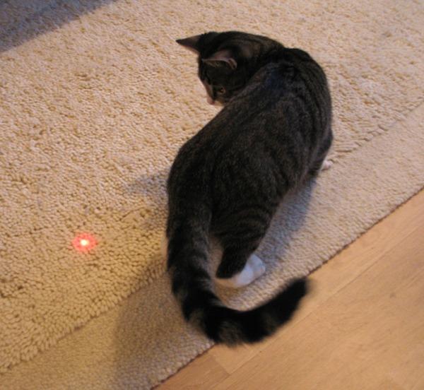seittemän kuvaa kun Zetor jahtaa laserpistettä