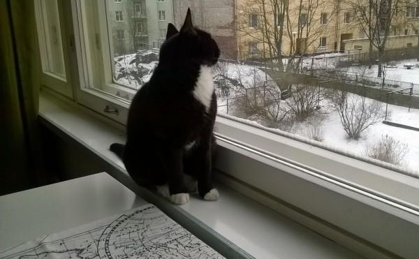 Mun kolmas talvi