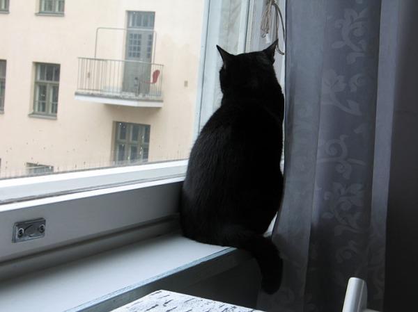 Ilona istuu yksin verhon takana ikkunalla ja kattoo ulos.