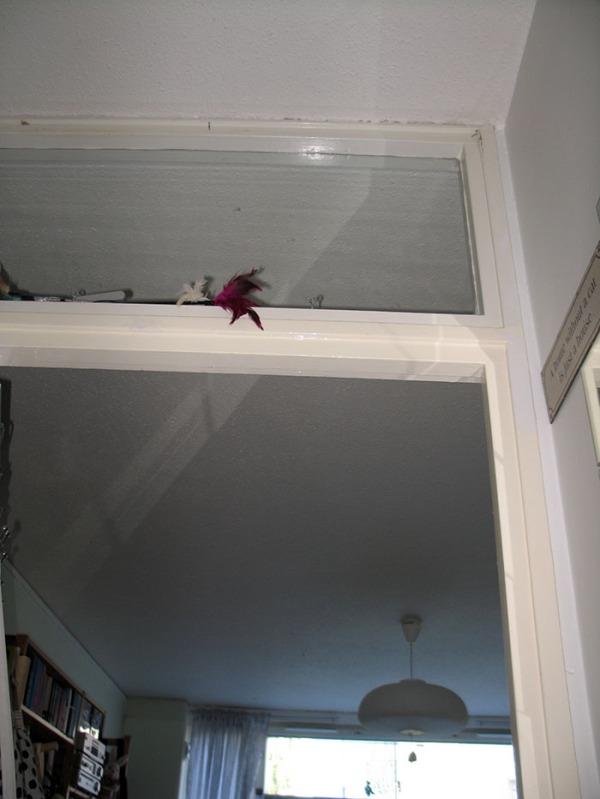 kuva oven päällyksestä alaviistosta, korkeus näkyy