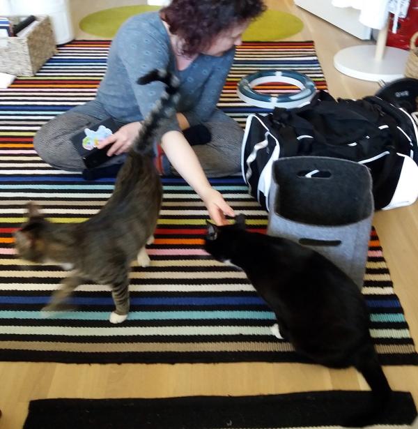zetor häippäsee, Minttu ojentaa ilonalle kättä katsomatta sinne päin, joten Ilona uskaltaa koskettaa kättä. Edelleen sama asetelma, lattialla istutaan.