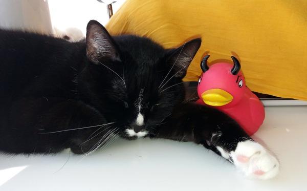 tarvittaessa kylpyankan viereen voi kuitenkin nukahtaa