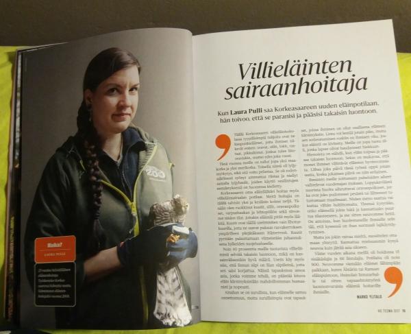 tässä on kuva lehden aukeamasta, Laura pitelee jotain pöllönpoikasta vasemmalla Korkeasaaren työvaatteet päällä ja teksti on oikealla