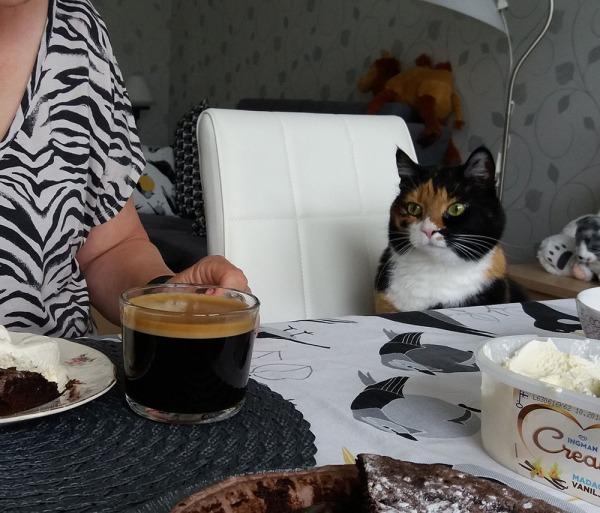 sofia istuu pöydän ääressä odottamassa omaa jätskiään kun muillakin on