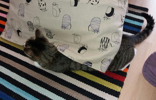 zet ison tyynyn kulman alla