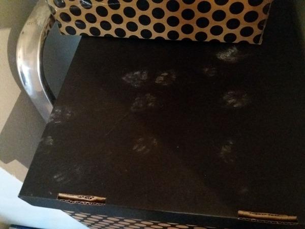 mustalla pahvilla hyvin näkyy, mitä kautta on pöytassuin menty ja tultu. Yhden laatikkopinon päältä tietty.