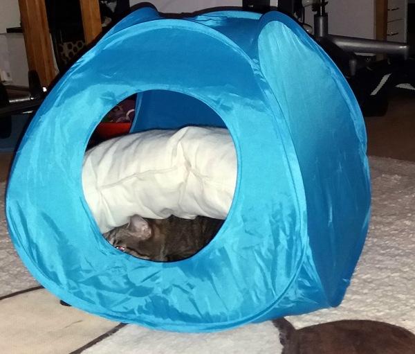 teltass on patja, jonka alla herra zetor