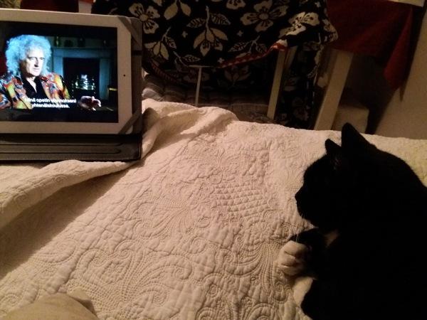 Ilona katsoo sängyllä ipadista queen-dokkaria