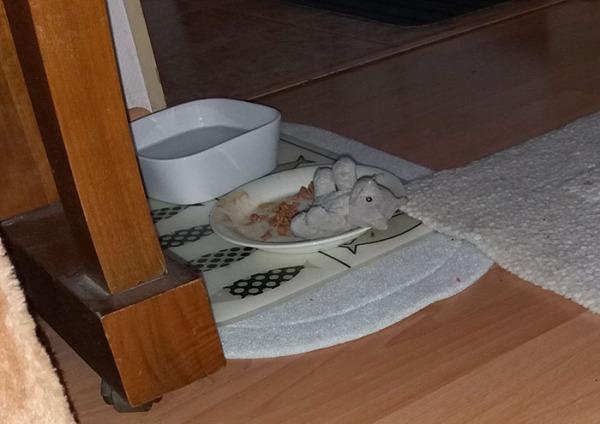 pikkuisempi kissa lykätty Zetorin ruokakuppiin.