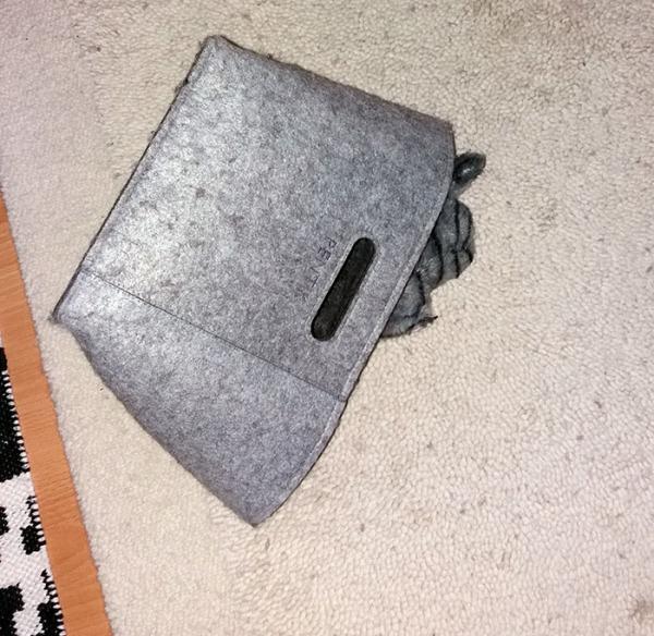 lelukissa on tungettu huopapesään, näkyy reunan alta