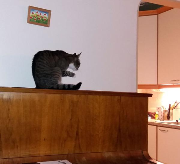 tassunpesua, näytin vähän ympäristöö kans kun pianon sivulta voi nähdä myös keittiötä
