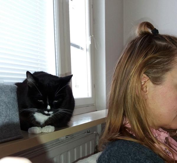 Ilona nököttää ikkunalaudalla S:n pään takana, S istuu sohvalla