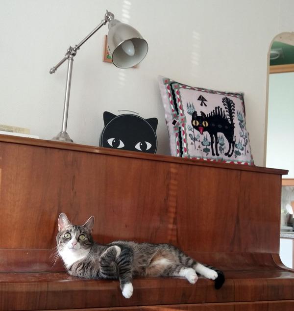poju lojuu pianon kannella, takana kissannaama-laukku ja kissatyyny