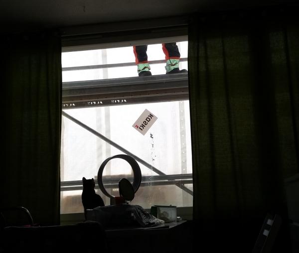 varjokuvana: z istuu pöydällä  ikkunan edessä ja tuijottaa ylös, jossa näkyy telineellä miehen jalat