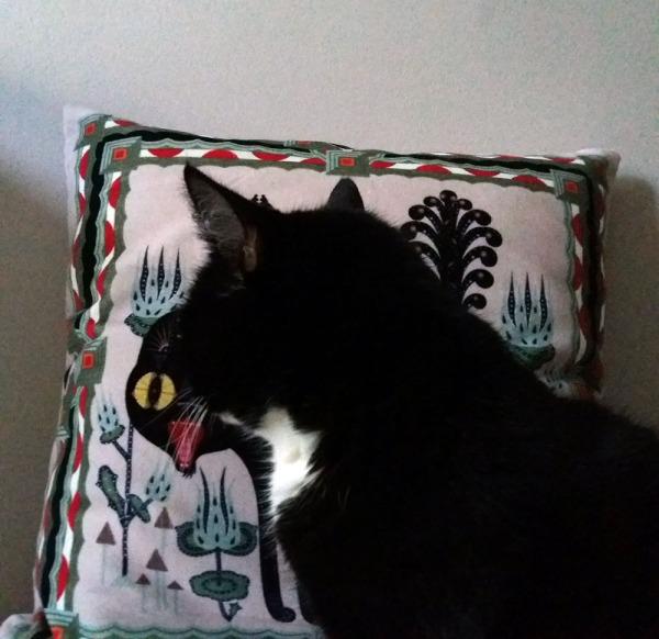 ilona istuu kissatyynyn edessä ja katsoo sitä. Tyynyssä tyylitelty kissa sähisee suu auki